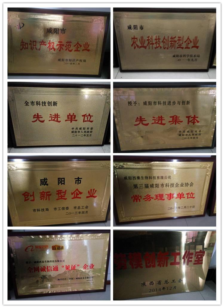 咸阳西秦生物科技有限公司荣誉1